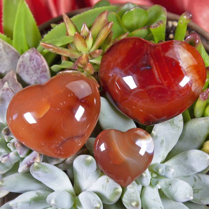 Courageous Carnelian Hearts