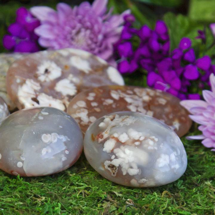 Peace and Beauty Flower Agate Palm Stones