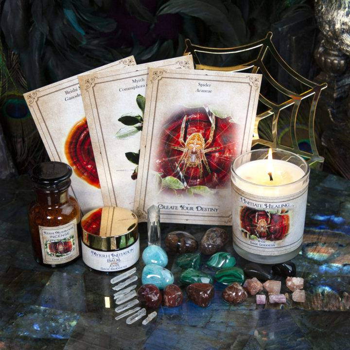 New Moon Enchanted Plant Wisdom Myrrh and Reishi Mushroom Set