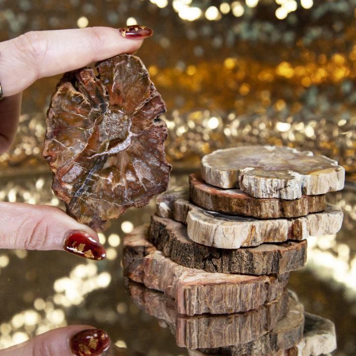 Mini Petrified Wood Altar Plates