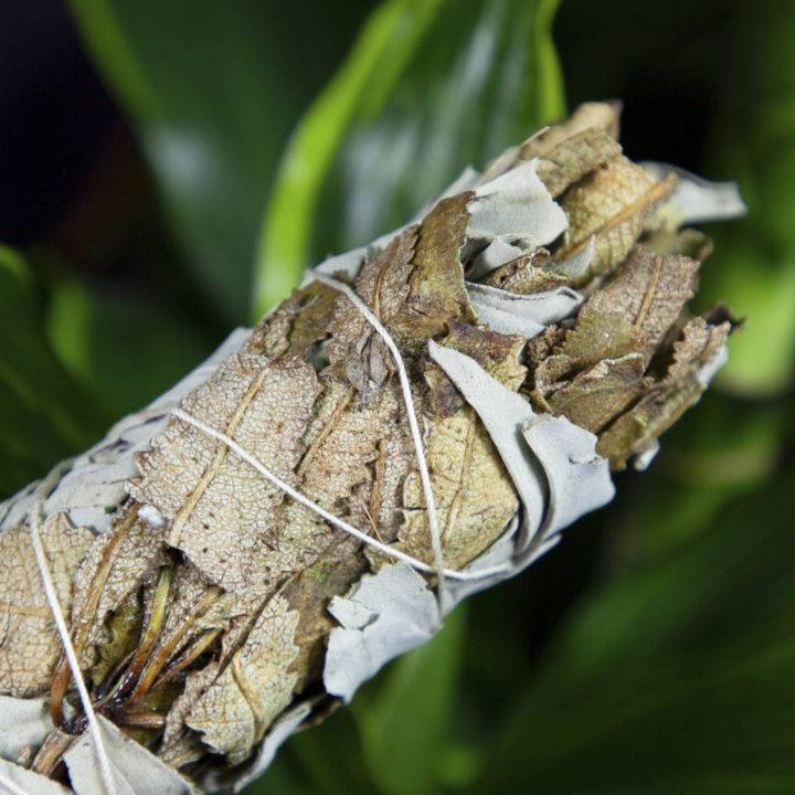 Small Yerba Santa and White Sage Smudge Bundles