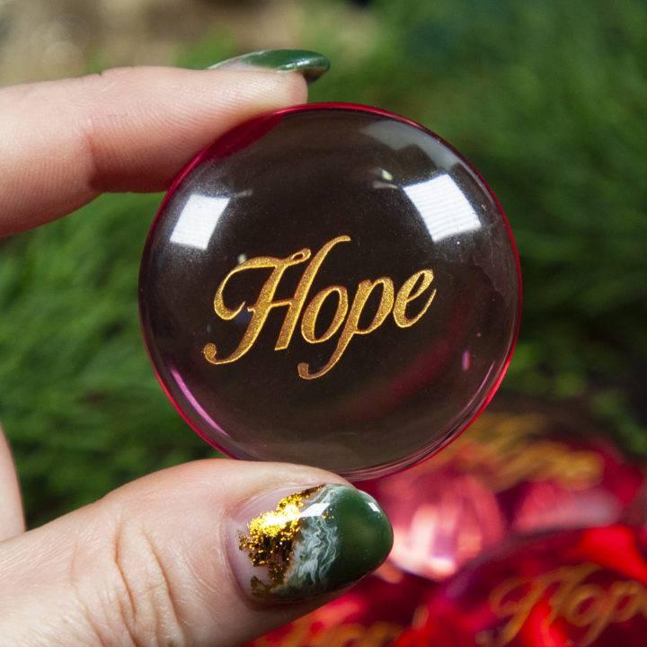 """""""Hope"""" BeeBops"""