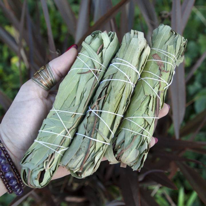 Eucalyptus Smudge Bundle