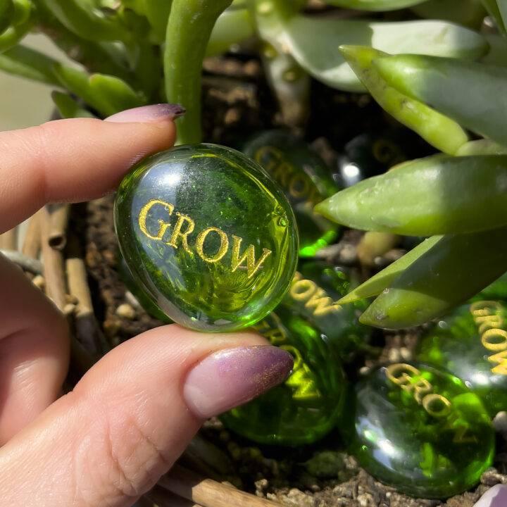 """""""Grow"""" Mini BeeBop"""