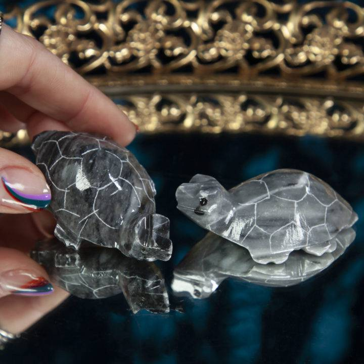 Grey Onyx Turtle