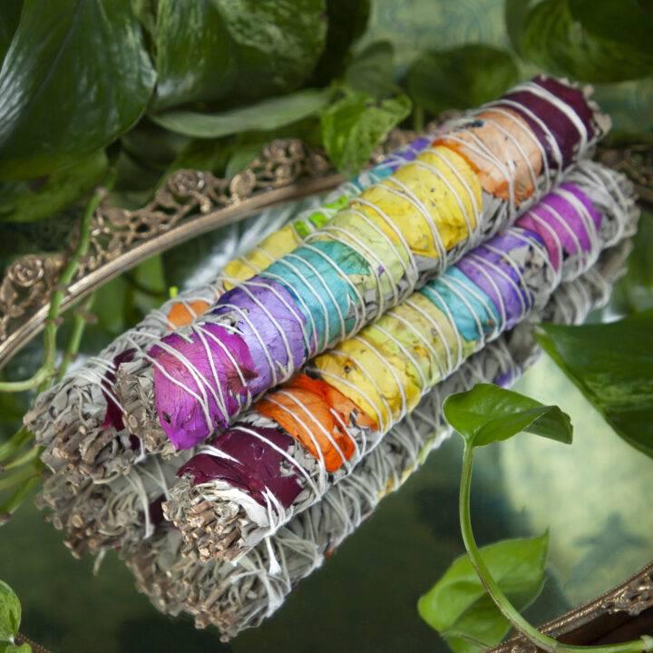 Large Rainbow Chakra Smudge Bundle