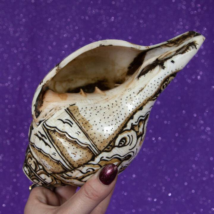 Hand Carved Conch Shell Citipati