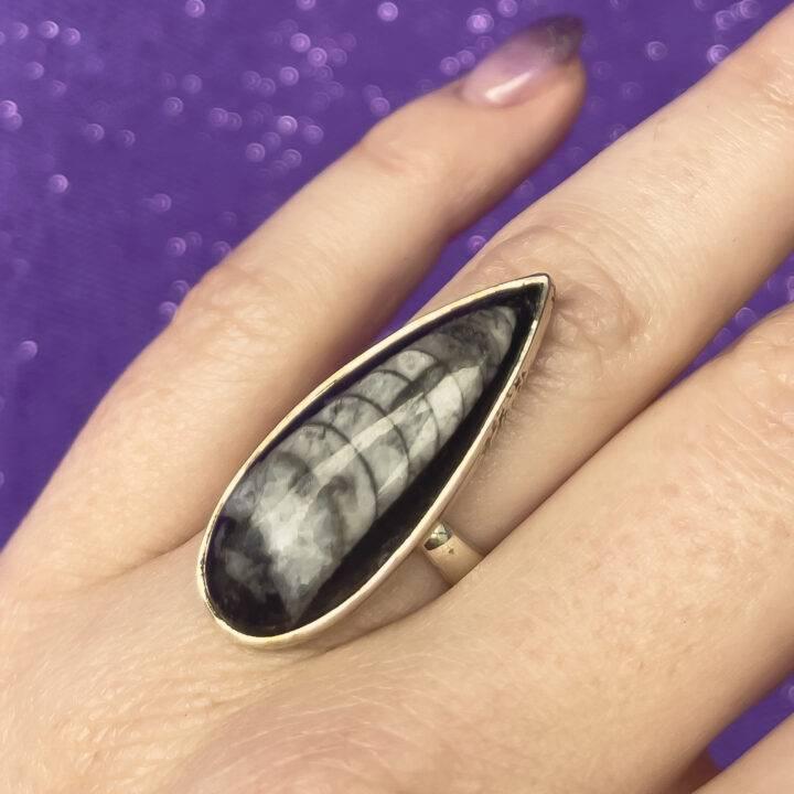 Black Orthoceras Adjustable Ring