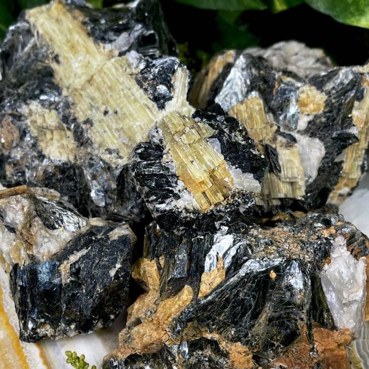 Natural Yellow Tourmaline in Black Mica and Quartz Matrix