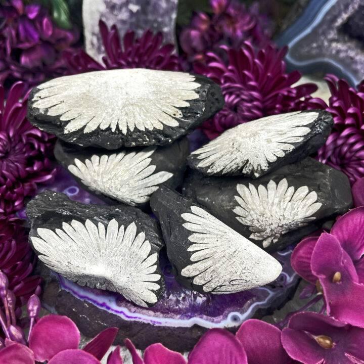 Natural Chrysanthemum Stone