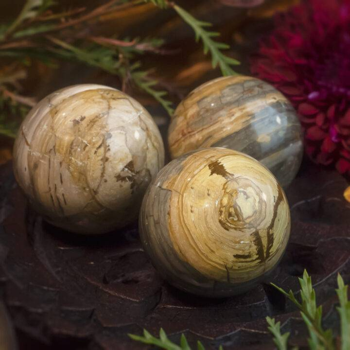 Freedom and Possibility Palomino Picture Jasper Sphere