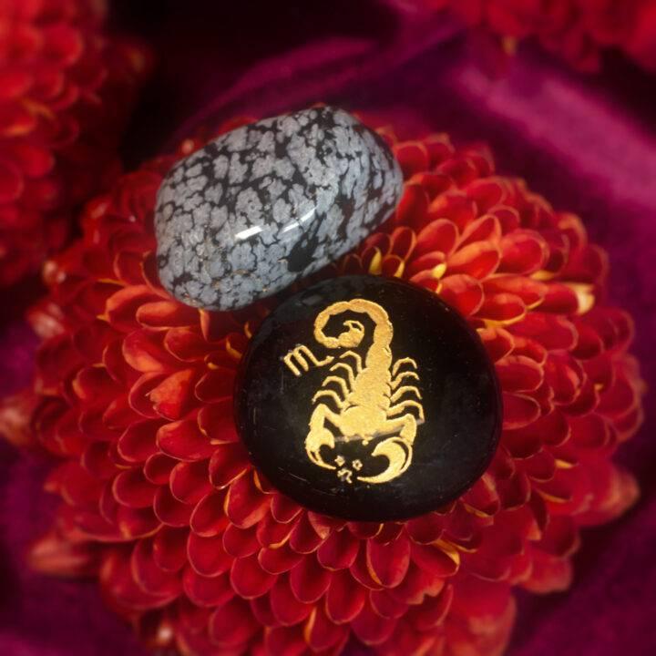 Scorpio BeeBop and Stone Duo